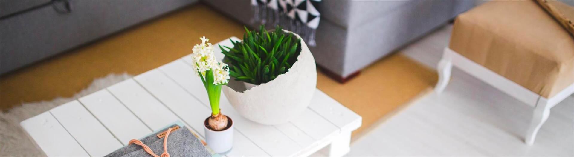 Creatività e Fai da te: scopri ora i consigli per una casa di tendenza!